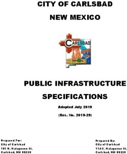 Icon of City Of Carlsbad Specification Document July 2019