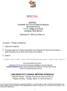 Icon of 02-21-19 Special Council Agenda Packet