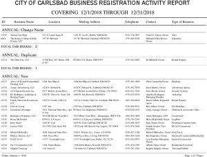 Icon of PERD Monthly Business Rpt - 12-2018